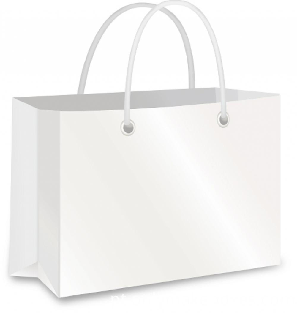 Shopping Paper Bag3